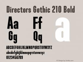 Directors Gothic 210