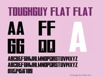 ToughGuy Flat