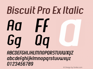 Biscuit Pro Ex