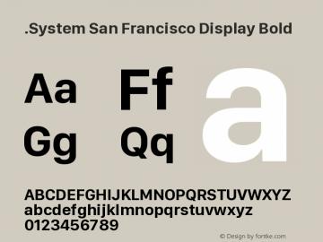 .System San Francisco Display