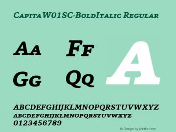 CapitaSC-BoldItalic