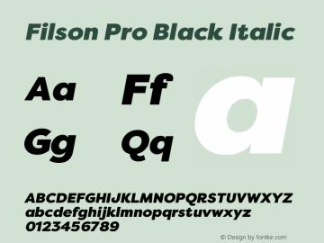 Filson Pro Black
