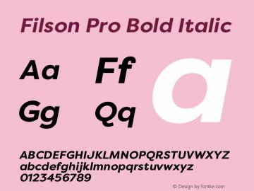 Filson Pro Bold