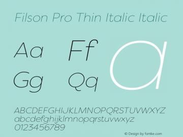 Filson Pro Thin Italic