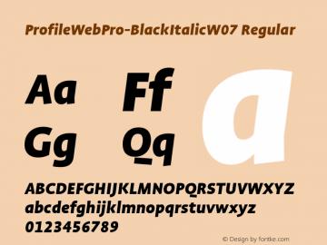 ProfileWebPro-BlackItalic