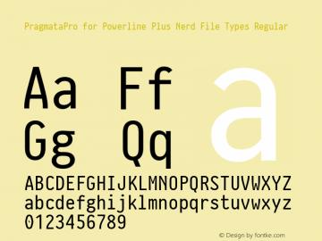 PragmataPro for Powerline Plus Nerd File Types