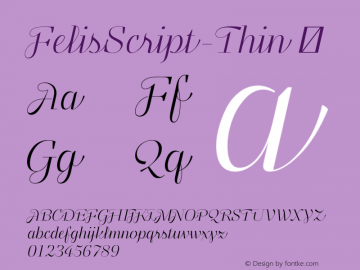 FelisScript-Thin