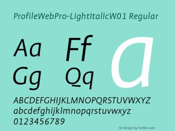 ProfileWebPro-LightItalic