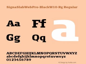 SignaSlabWebPro-Black-Rg
