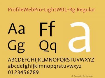 ProfileWebPro-Light-Rg