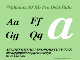 Walbaum 10 XL Pro