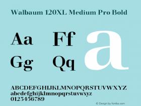 Walbaum 120XL Medium Pro