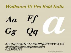 Walbaum 10 Pro