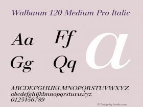 Walbaum 120 Medium Pro