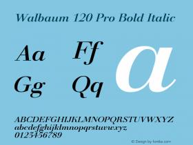 Walbaum 120 Pro