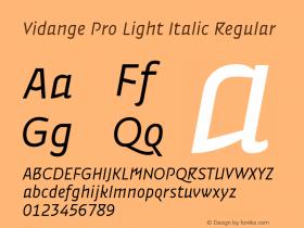 Vidange Pro Light Italic