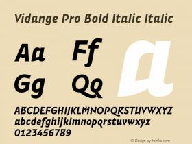 Vidange Pro Bold Italic