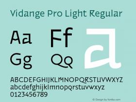 Vidange Pro Light