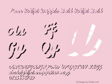 Look Script Dapple Bold