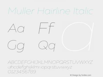 Muller Hairline