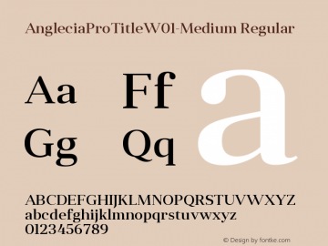 AngleciaProTitle-Medium