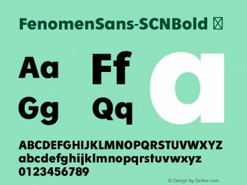 FenomenSans-SCNBold