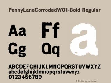 PennyLaneCorroded-Bold