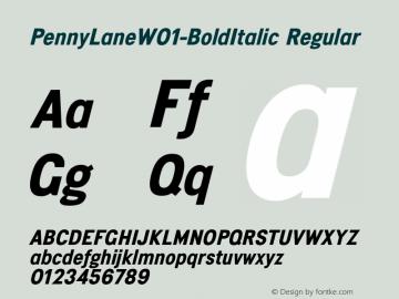 PennyLane-BoldItalic