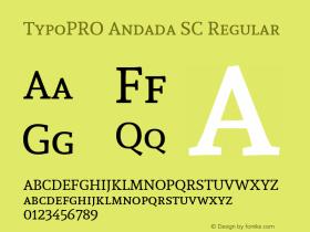 TypoPRO Andada SC