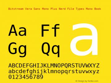 Bitstream Vera Sans Mono Plus Nerd File Types Mono