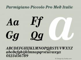 Parmigiano Piccolo Pro Med