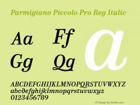 Parmigiano Piccolo Pro Reg