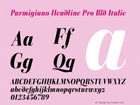 Parmigiano Headline Pro Bld