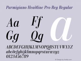 Parmigiano Headline Pro Reg