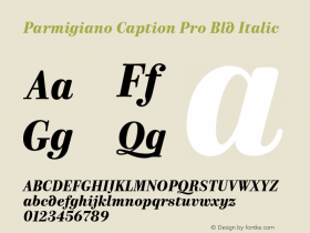 Parmigiano Caption Pro Bld