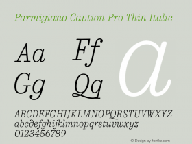 Parmigiano Caption Pro Thin