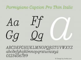 Parmigiano Caption Pro Thin