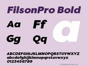 FilsonPro