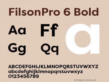 FilsonPro 6