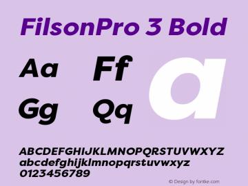 FilsonPro 3