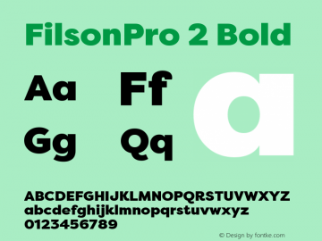 FilsonPro 2