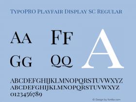 TypoPRO Playfair Display SC