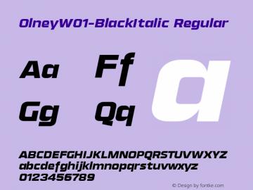 Olney-BlackItalic