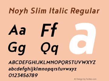 Noyh Slim Italic