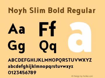 Noyh Slim Bold