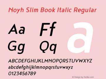 Noyh Slim Book Italic