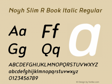 Noyh Slim R Book Italic