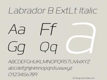 Labrador B ExtLt