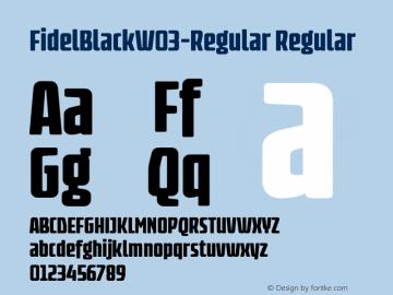 FidelBlack-Regular