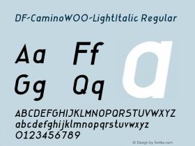 DF-Camino-LightItalic